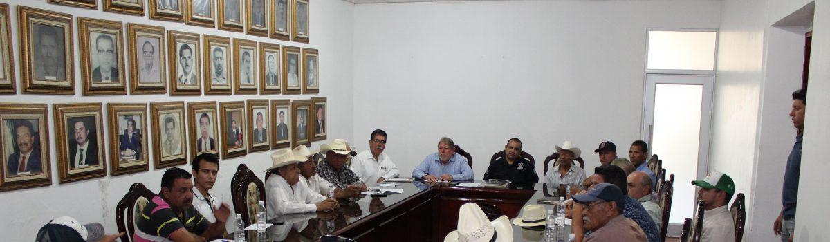 Autoridades municipales y productores de mango buscan eliminar el robo hormiga.