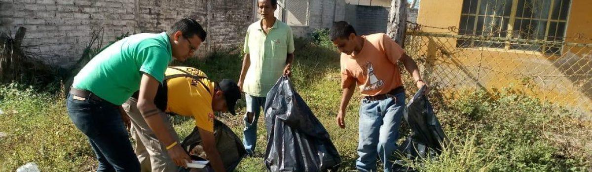 Realiza Ecología limpieza y reforestación de palmas en Teacapán.