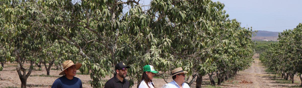 Utilizan Tecnología y herramienta novedosa para beneficios en el sector agrícola.