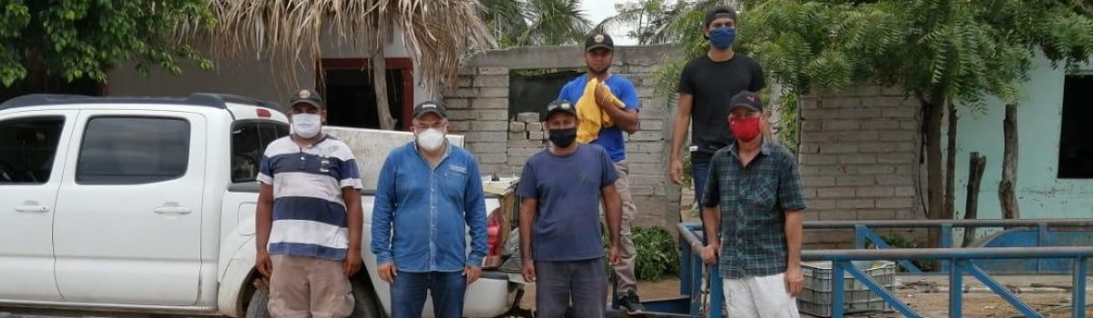 Gobierno municipal y jurisdicción sanitaria VI realizan descacharrización en Teacapán.