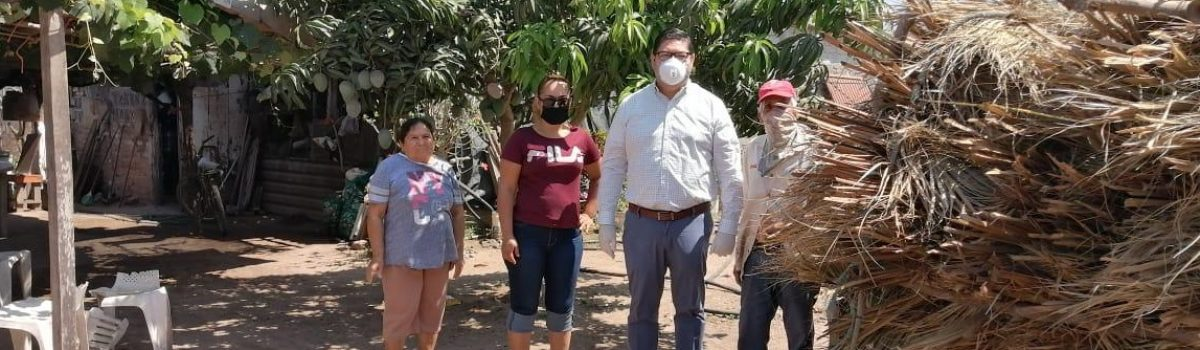 Agradecen vecinos de Celaya donación de palmas.