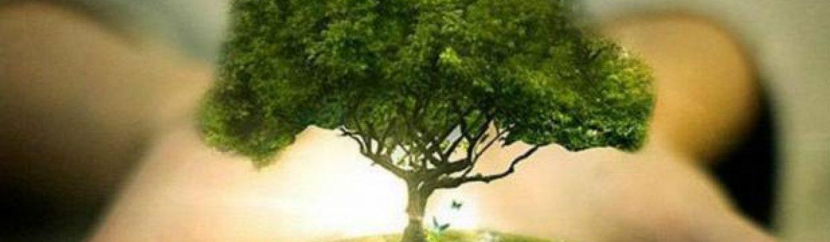 Con un ciclo de conferencias celebraran El Día Mundial de la Naturaleza.
